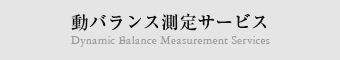 動バランス測定サービス Dynamic Balance Measurement Services